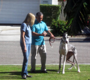 Cesar Millan and Buster